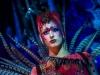 syoksy-sorin-sirkus-2013-17of49