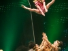 syoksy-sorin-sirkus-2013-18of49